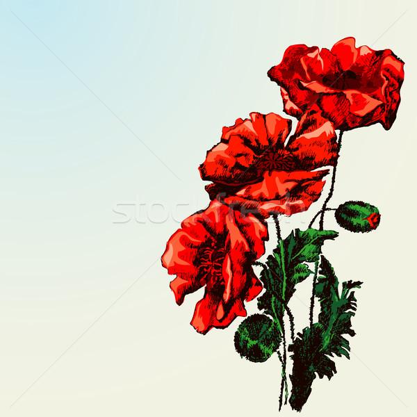 Czerwony maku kwiaty papieru liści Zdjęcia stock © jul-and