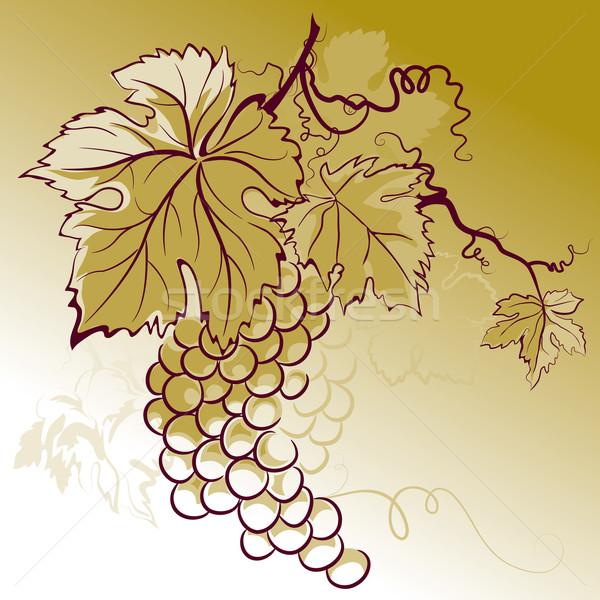 виноград листьев продовольствие лист фрукты Сток-фото © jul-and