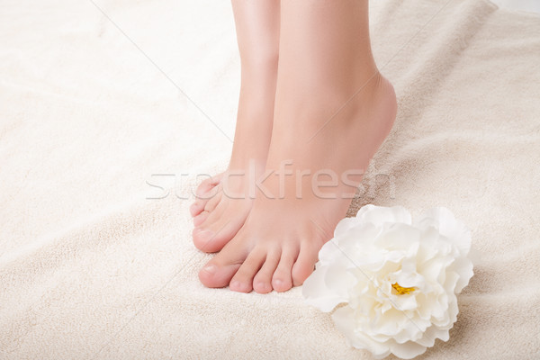 care for beautiful woman legs.  Stock photo © julenochek