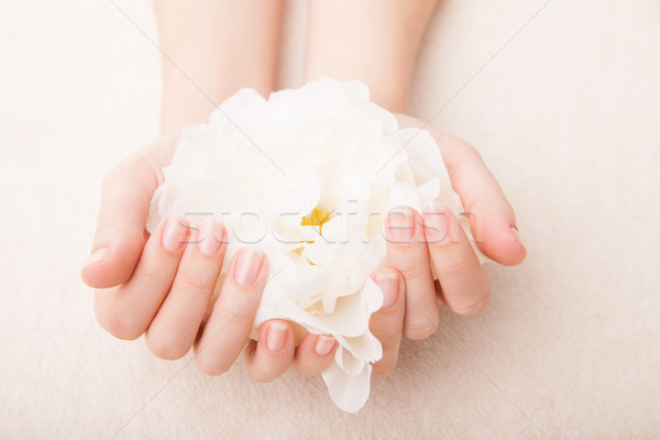 Belo mão perfeito prego manicure french manicure Foto stock © julenochek