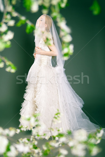 Beautiful young bride has veil over her head and face. Stock photo © julenochek