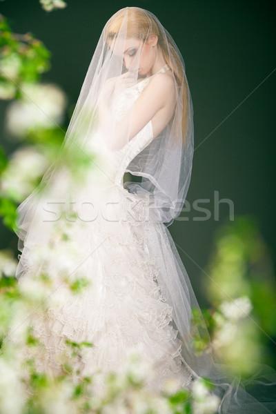 Silhouette of a beautiful thoughtful bride. Stock photo © julenochek