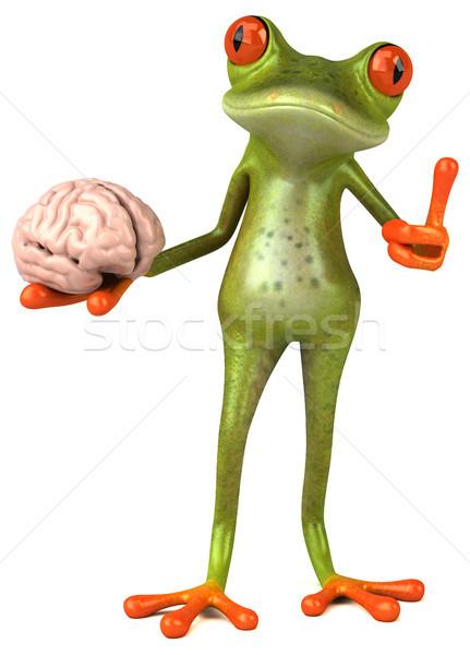 Amusement grenouille oeil nature cerveau émotion Photo stock © julientromeur