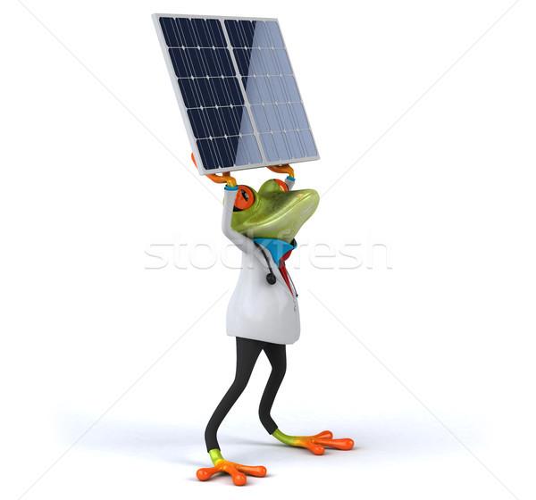Jókedv béka zöld trópusi elektromosság nap Stock fotó © julientromeur