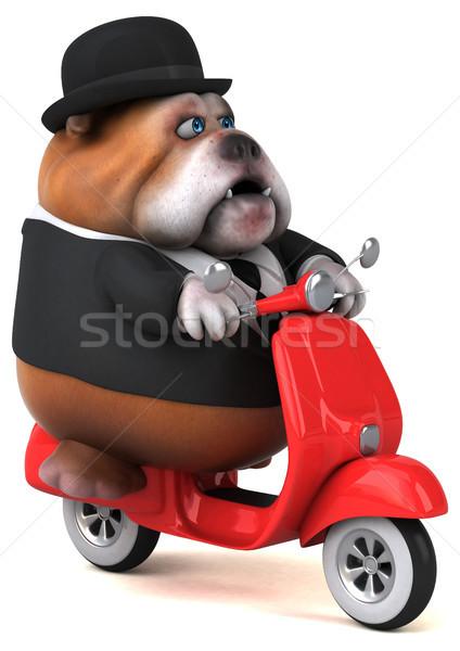 楽しい ブルドッグ 3次元の図 犬 デザイン モデル ストックフォト © julientromeur
