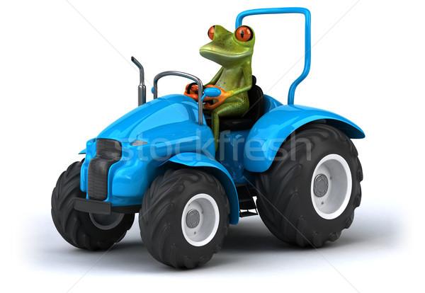 楽しい カエル 自然 緑 熱帯 国 ストックフォト © julientromeur