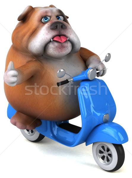 Diversão buldogue ilustração 3d cão modelo arte Foto stock © julientromeur