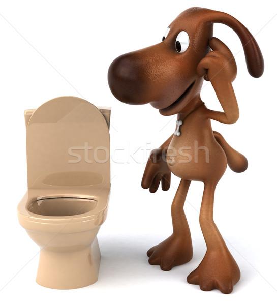 Zabawy psa biały zwierząt WC ucha Zdjęcia stock © julientromeur