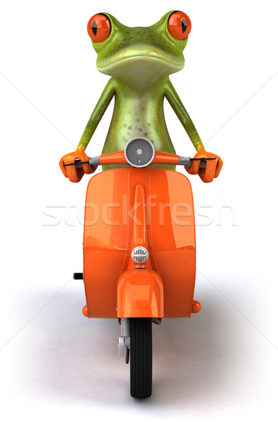 Frog on a scooter Stock photo © julientromeur