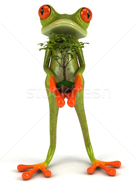 Frog and plant Stock photo © julientromeur