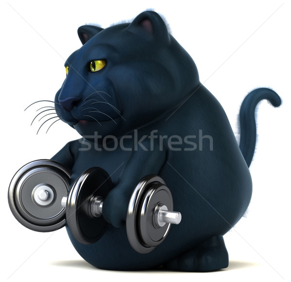 Gato preto ilustração 3d esportes gato ginásio preto Foto stock © julientromeur