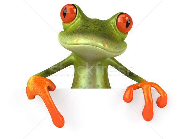 Stok fotoğraf: Kurbağa · doğa · yeşil · hayvan · çevre