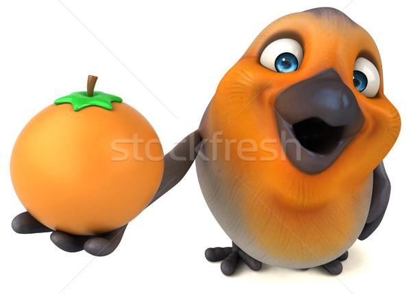 Jókedv madár gyümölcs narancs mell fehér Stock fotó © julientromeur