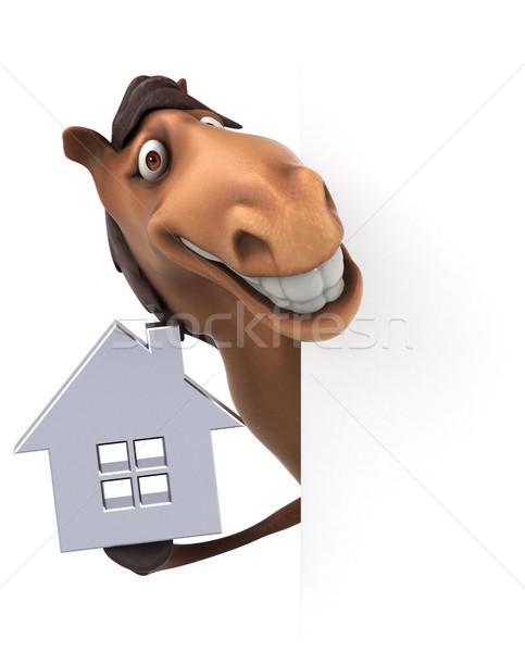 Diversión caballo casa dientes cabeza inmobiliario Foto stock © julientromeur