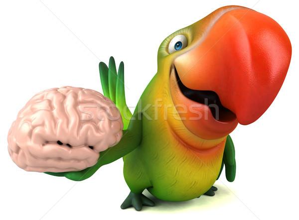 Stok fotoğraf: Eğlence · papağan · göz · kuş · yeşil · beyin