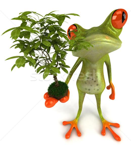 Rana planta árbol naturaleza verde animales Foto stock © julientromeur