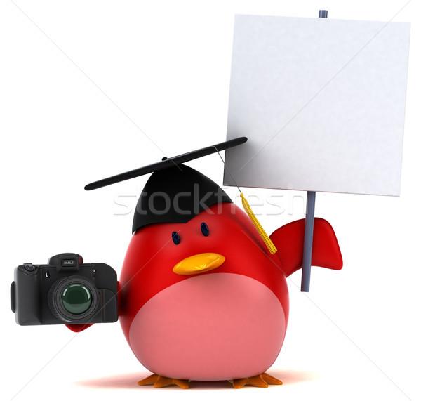 Stok fotoğraf: Kırmızı · kuş · 3d · illustration · turuncu · meme · fotoğraf
