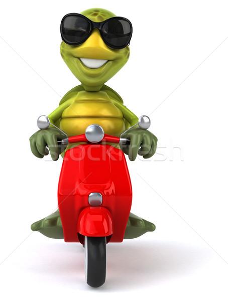 楽しい カメ 自転車 レトロな マシン 熱帯 ストックフォト © julientromeur