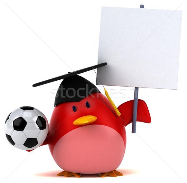 Vermelho pássaro ilustração 3d futebol futebol laranja Foto stock © julientromeur