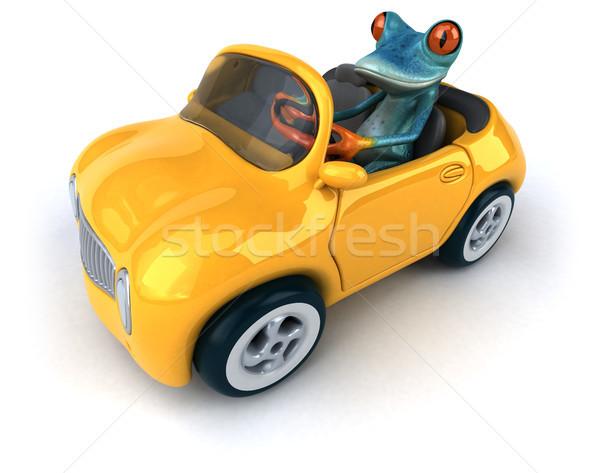 Leuk kikker 3d illustration oog tropische auto Stockfoto © julientromeur
