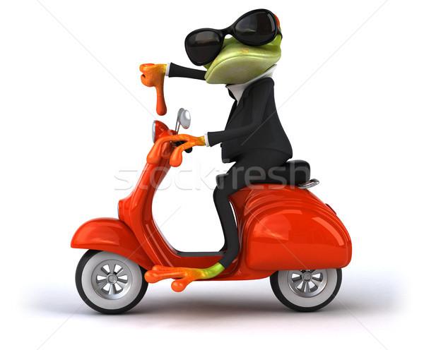 Leuk kikker model kunst fiets retro Stockfoto © julientromeur