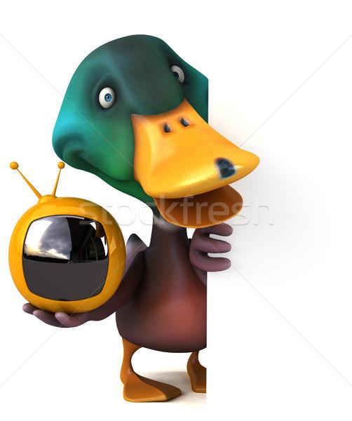 Duck Stock photo © julientromeur