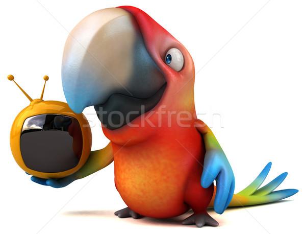 Fun parrot Stock photo © julientromeur