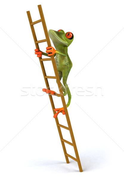 Leuk kikker groene tropische ladder 3D Stockfoto © julientromeur