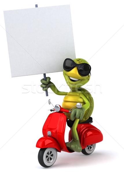 Diversão tartaruga bicicleta retro máquina tropical Foto stock © julientromeur
