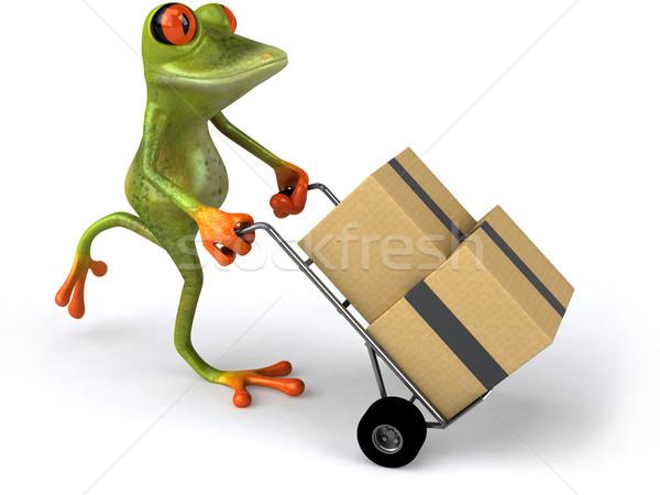 Stok fotoğraf: Kurbağa · hareketli · doğa · yeşil · hayvan · çevre