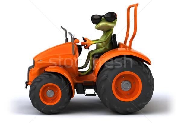 ストックフォト: 楽しい · カエル · 自然 · 緑 · 熱帯 · 国