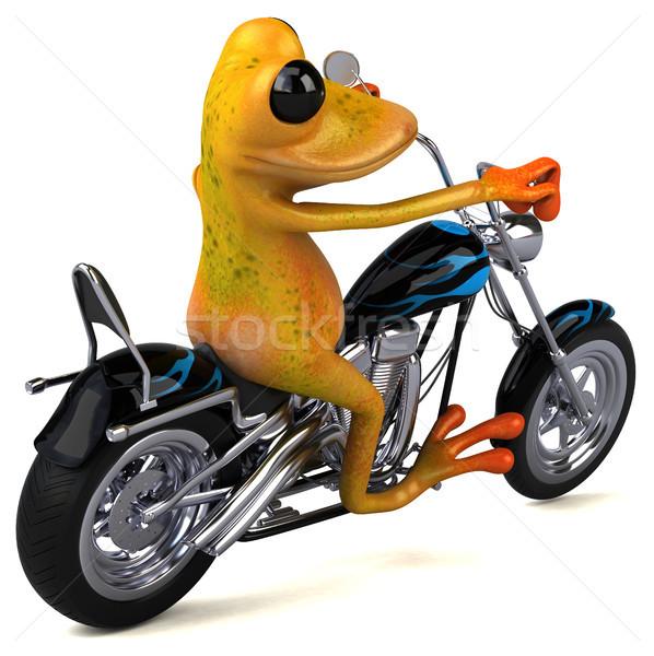 Leuk kikker 3d illustration ontwerp fiets reizen Stockfoto © julientromeur