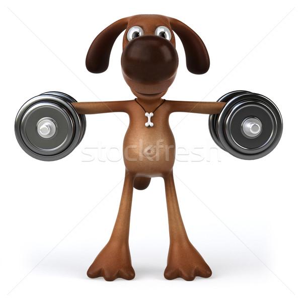 Zdjęcia stock: Zabawy · psa · psów · biały · zwierząt · zwierzęta