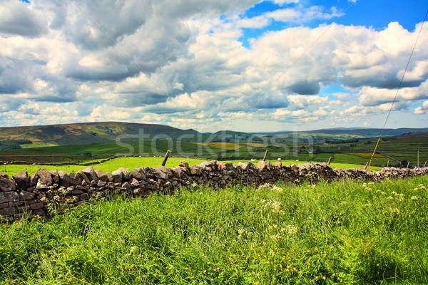 Belle paysage pierre murs yorkshire Angleterre Photo stock © Julietphotography