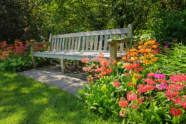 Wooden bench and bright blooming flowers Stock photo © Julietphotography