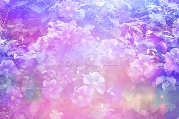 夢のような 美しい フローラル ぼけ味 ライト テクスチャ ストックフォト © Julietphotography