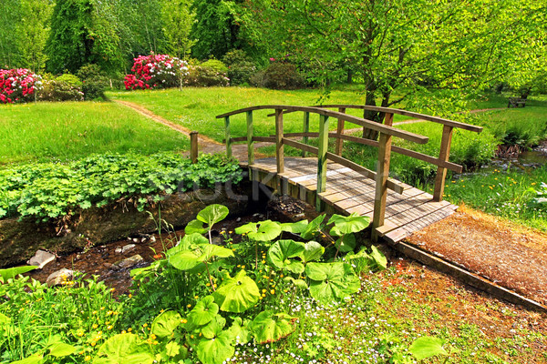 Old wooden bridge in a beautiful garden Stock photo © Julietphotography