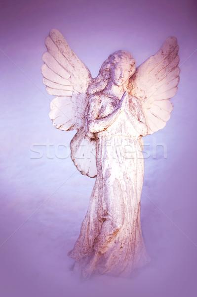 A white angel praying Stock photo © Julietphotography