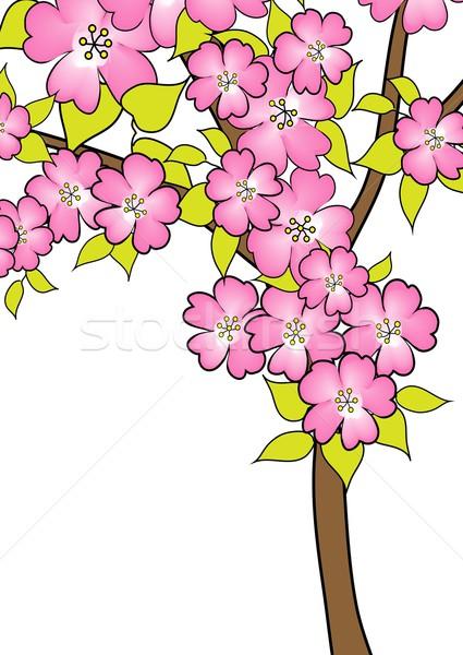 witte achtergrond tekening bloemen -#main