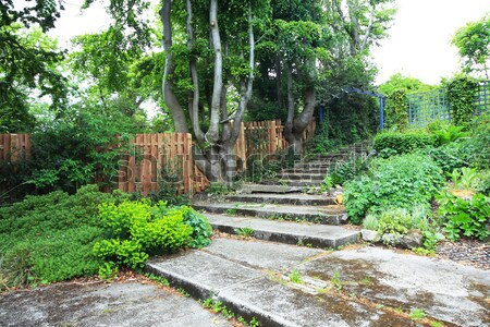 Fából készült ösvény zöld park tavasz út Stock fotó © Julietphotography