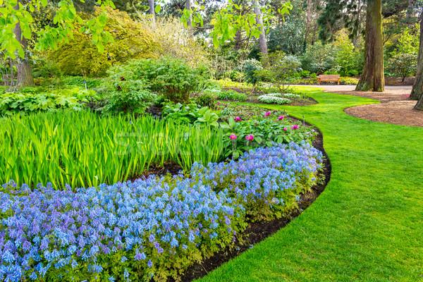 Belo botânico jardim primavera completo florescer Foto stock © Julietphotography