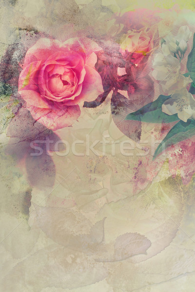 Romantic pink roses background Stock photo © Julietphotography