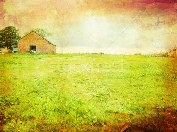 öreg csőr mezők koszos stílus égbolt Stock fotó © Julietphotography