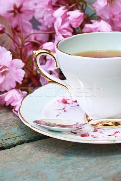 красивой Японский Вишневое дерево Кубок чай Сток-фото © Julietphotography