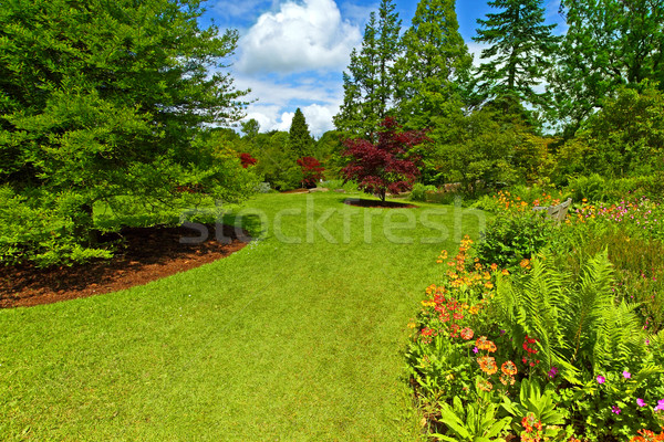 Garden landscaping, Srpingtime Stock photo © Julietphotography