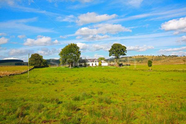 Gyönyörű nyár tájkép Fehér ház ház fa Stock fotó © Julietphotography