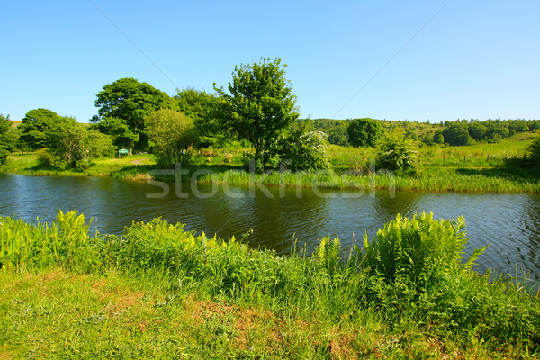 Forth and Clyde Canal in springtime Stock photo © Julietphotography