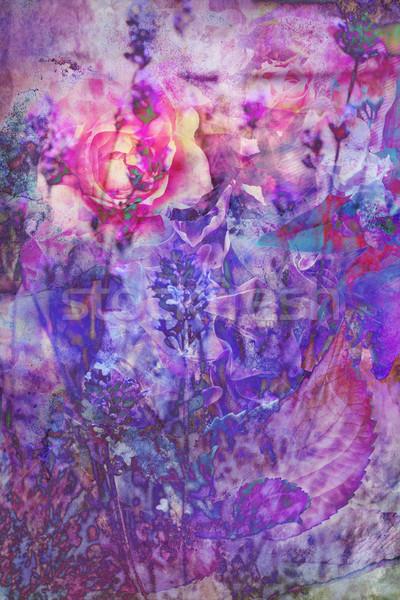 Frumos lavandă trandafiri artistic floare Imagine de stoc © Julietphotography