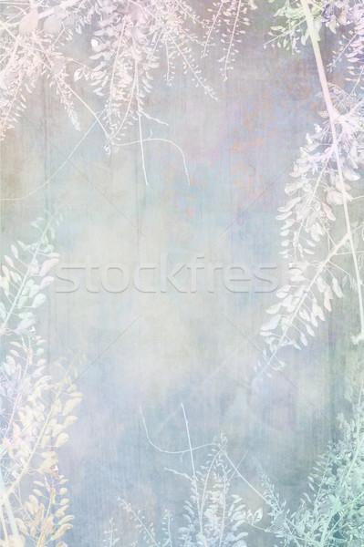 Dreamy grungy background Stock photo © Julietphotography