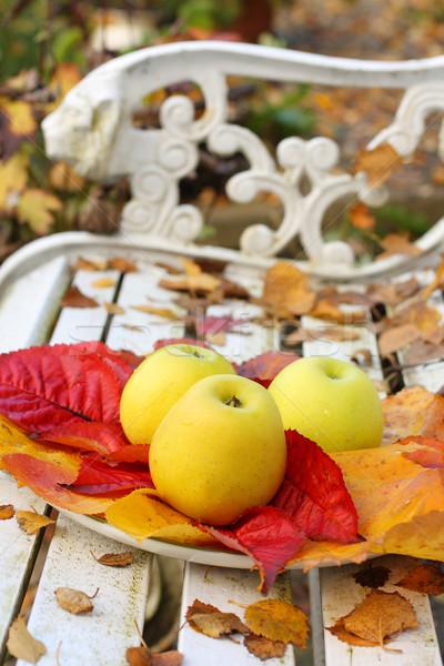 зрелый зеленый яблоки саду осень время Сток-фото © Julietphotography